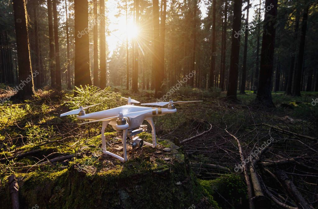 Quadrocopter drone on a tree trunk at sunset
