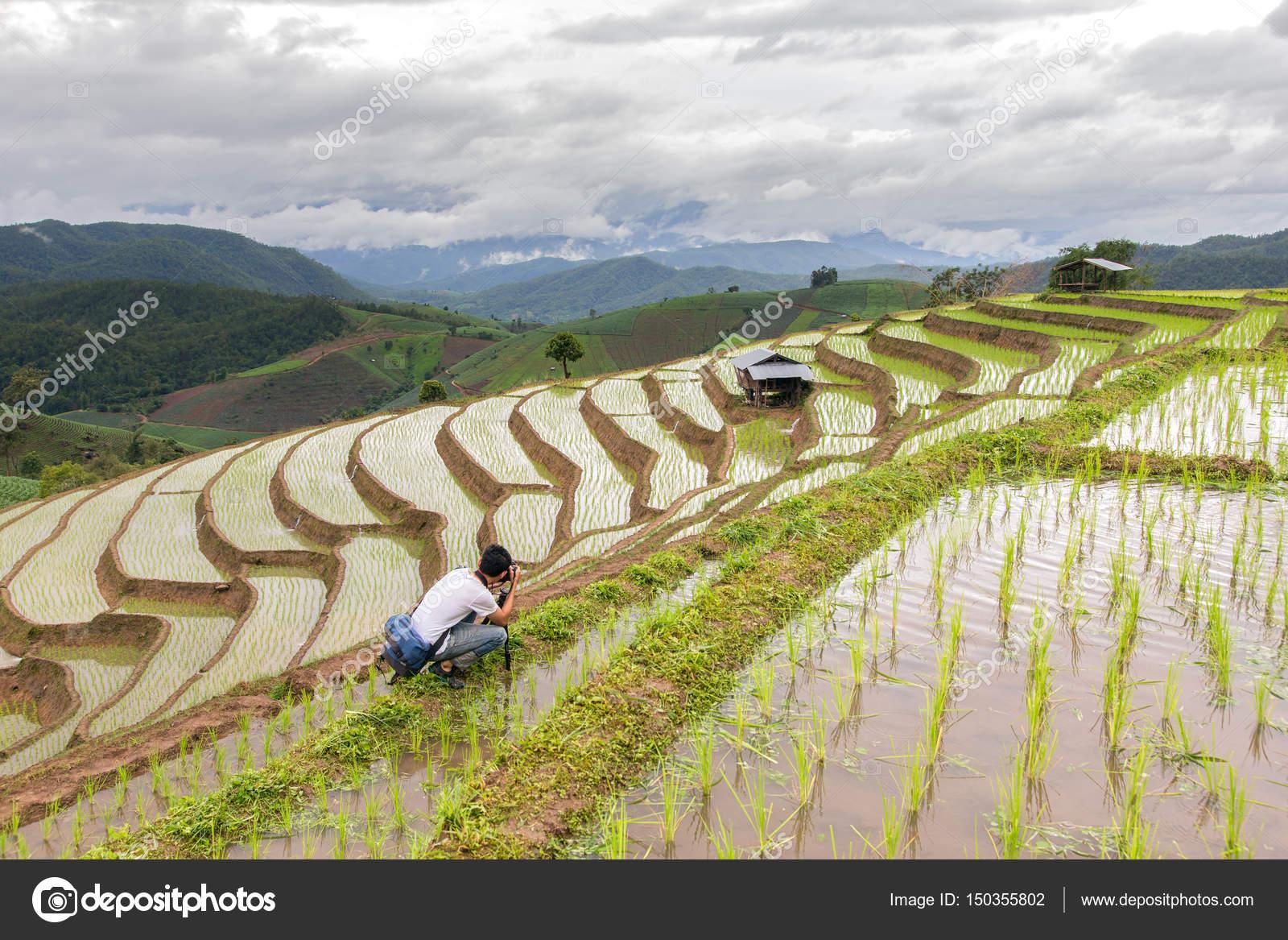 Uomo asiatico prendere un campo di riso a terrazze verdi foto in Pa ...