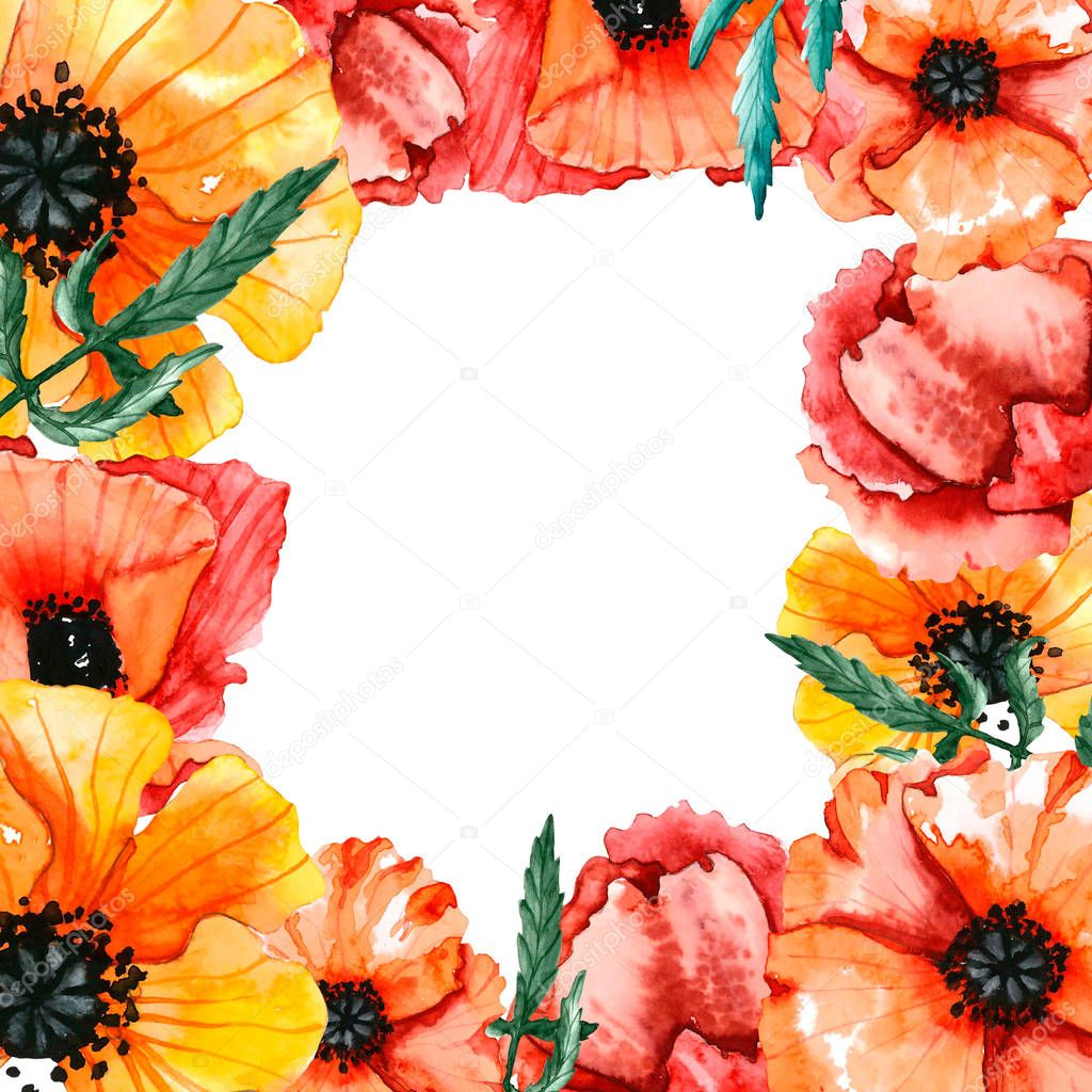 frame of watercolor poppies