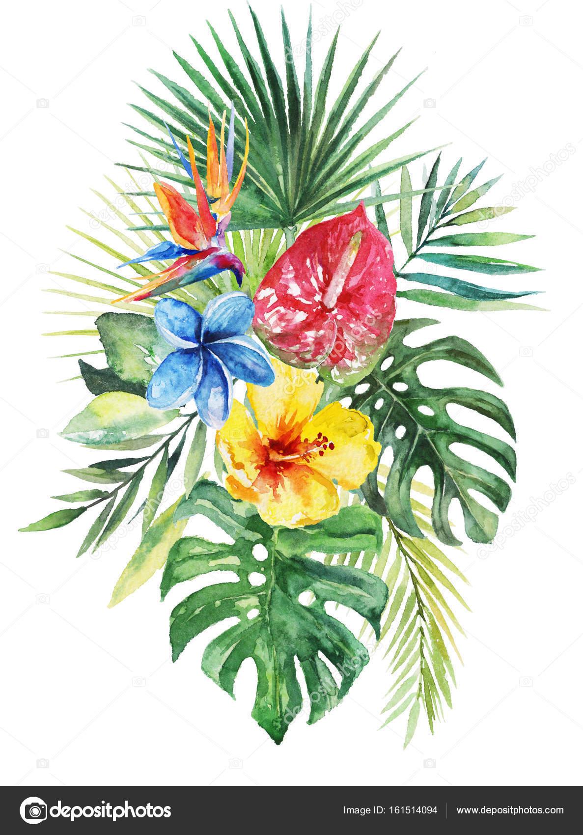 Цветок тропической
