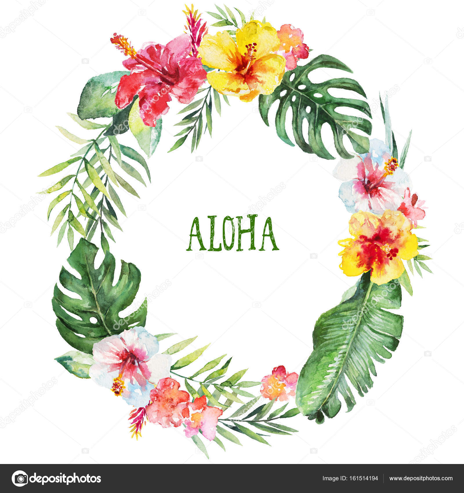 Watercolor floral illustration wreath with tropical - High resolution watercolor flowers ...