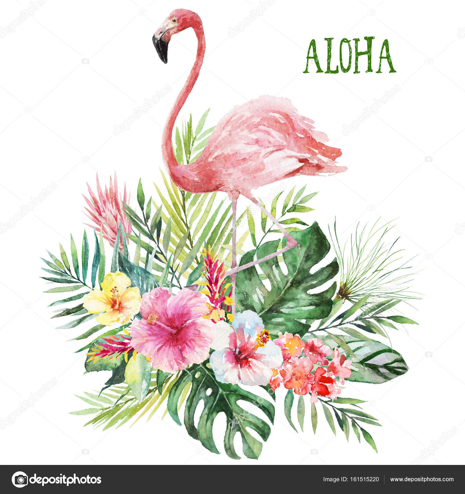 Illustration Aquarelle Fleur Floral Bouquet Avec Flamant Rose