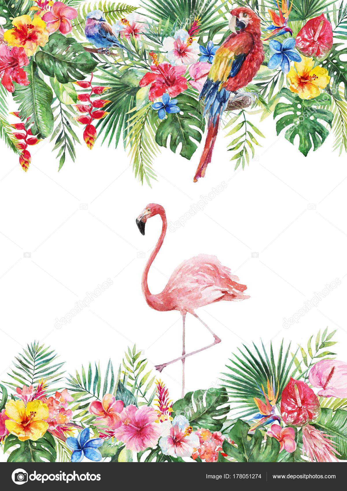 Ilustración Floral Tropical Acuarela Frontera Marco Hojas Verdes ...