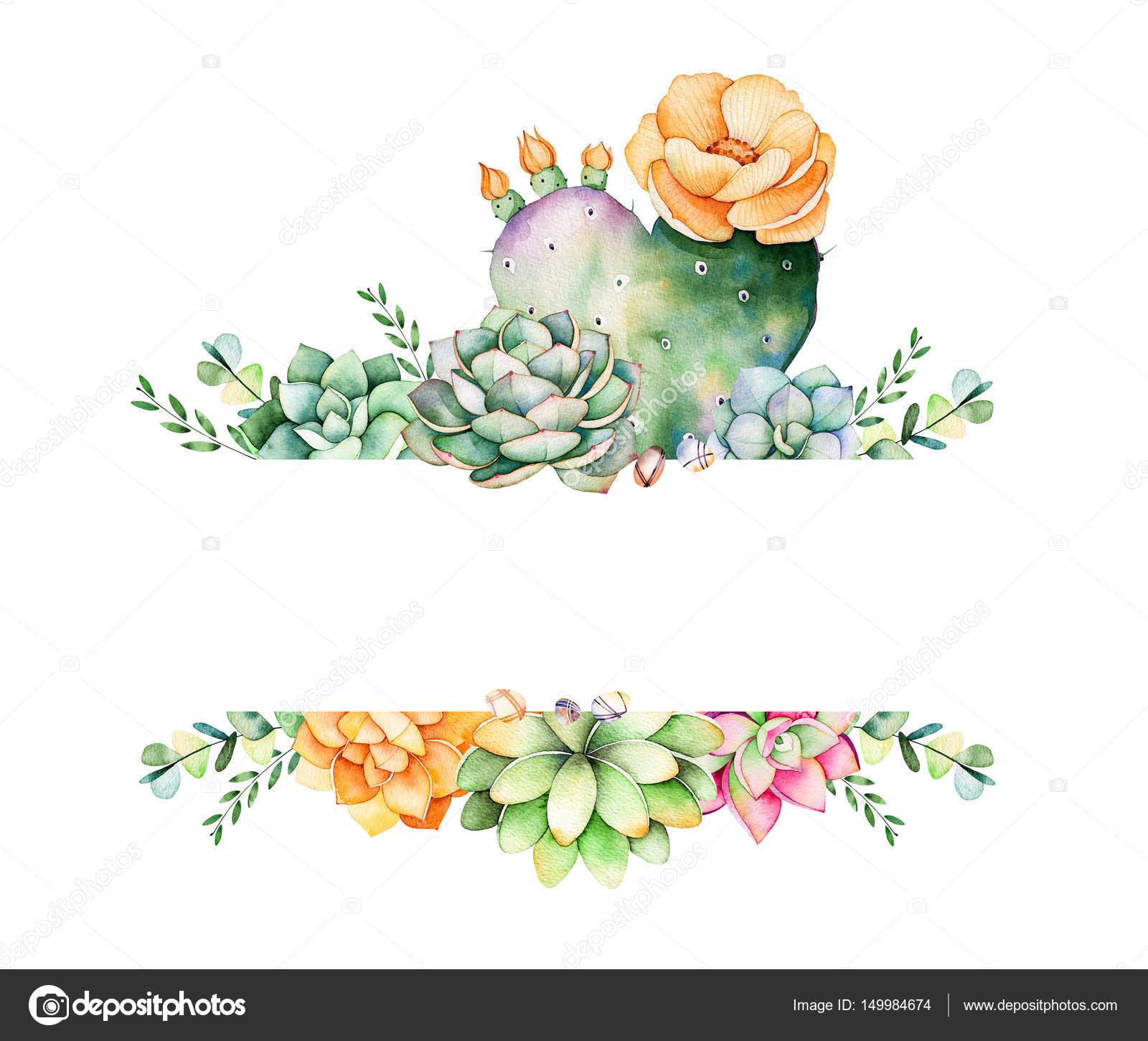 Marco colorido floral con hojas, planta suculenta — Foto de stock ...