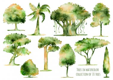 Set of hand drawn watercolor trees.