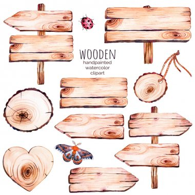 9 watercolor wood slices clipart.