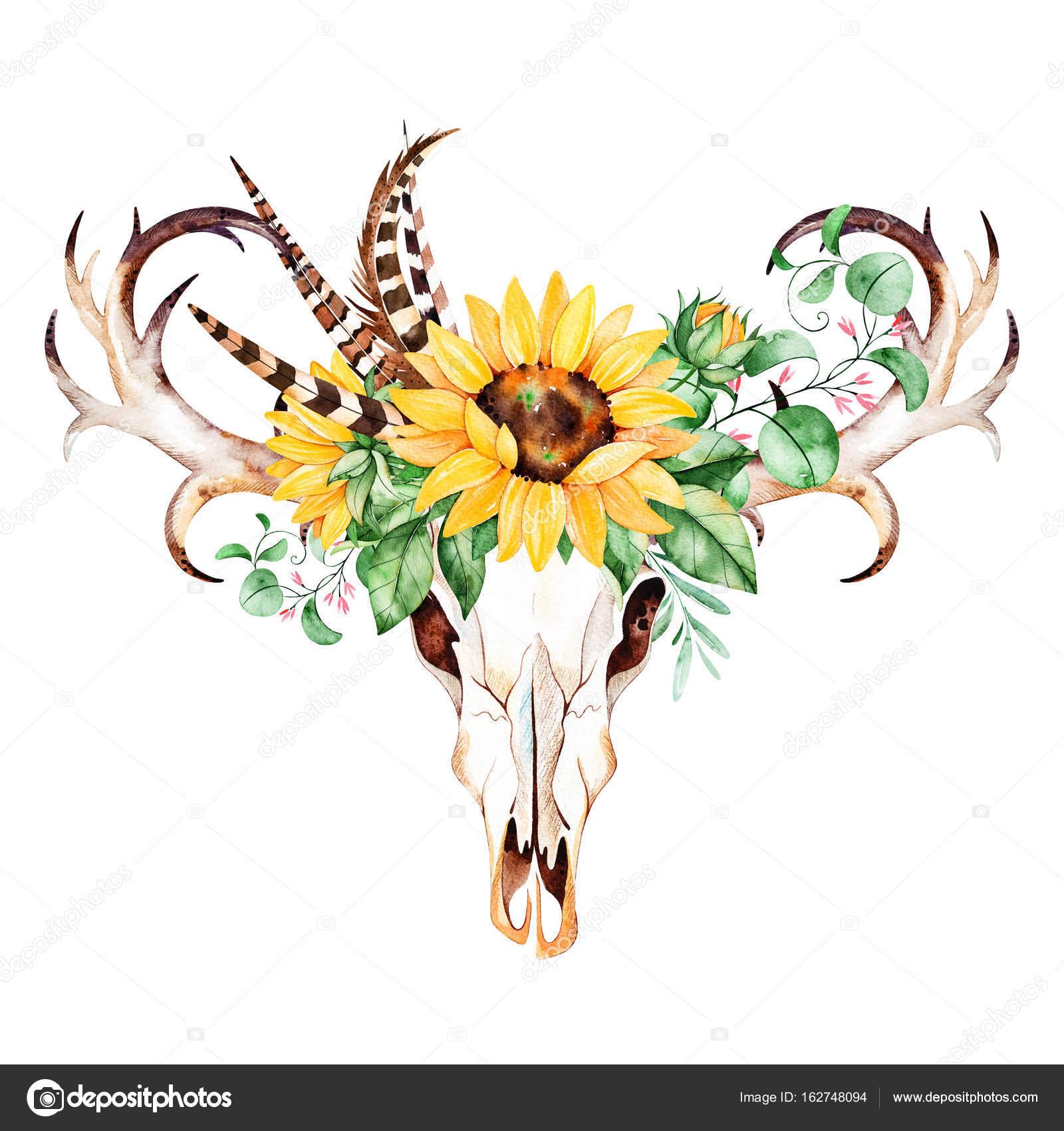 Aquarell Stier Schädel Kopf mit Sonnenblumen — Stockfoto ...