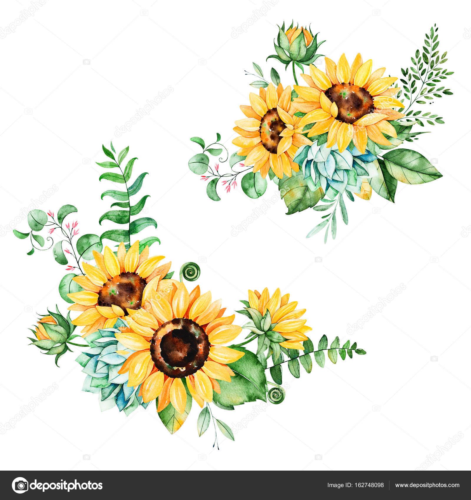Floral-Kollektion mit Sonnenblumen — Stockfoto © Katerina_Skorik ...
