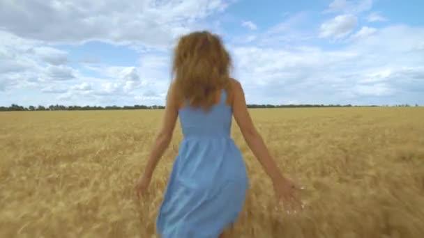 Ein fröhliches junges Mädchen rennt in Zeitlupe über das Feld und berührt mit ihrer Hand Ähren. schöne freie Frau genießt die Natur.