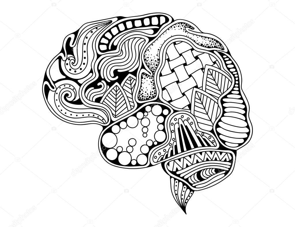 cerebro humano doodle curvas decorativas  mente creativa