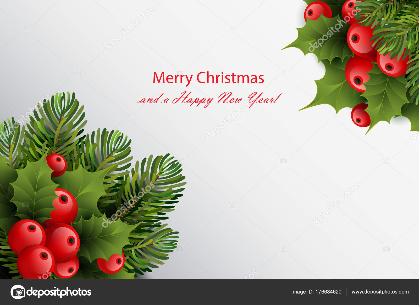 Christmas Card Template.Christmas Card Template With Ilex Holly Red Berries And