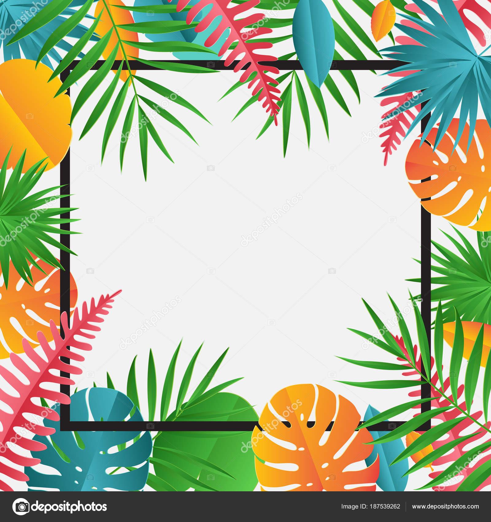 papier tropical monstera feuilles cadre image. Black Bedroom Furniture Sets. Home Design Ideas