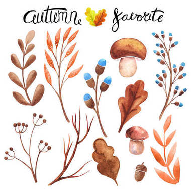 autumn design elements