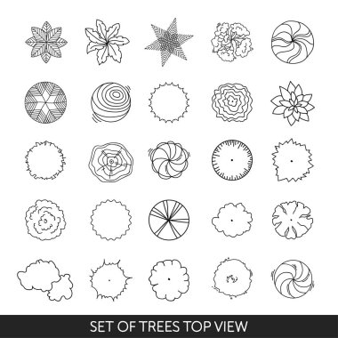 Set of trees. Top view