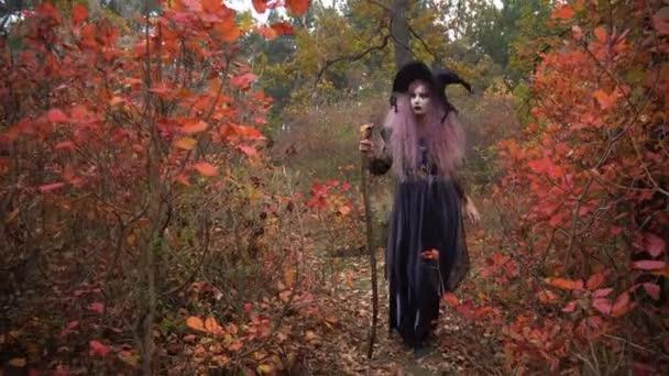 Mladá růžová čarodějnice vlasy v klobouku v mystické podzimním lese. Příprava na Halloween.