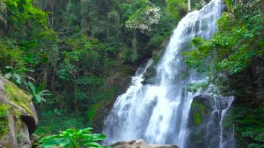 Picturesque Cascade Waterfall in Jungles. Doi inthanon National Park, Chiang Mai region, Thailand, able to loop