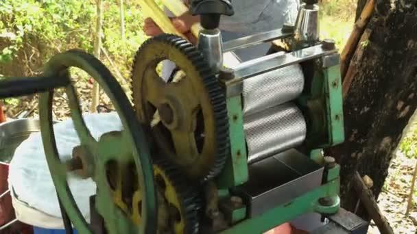 Cukornád Juice gép, nyers cukornád feldolgozása egy régi technológia nyomja meg a kivonat a lé a nád szárak
