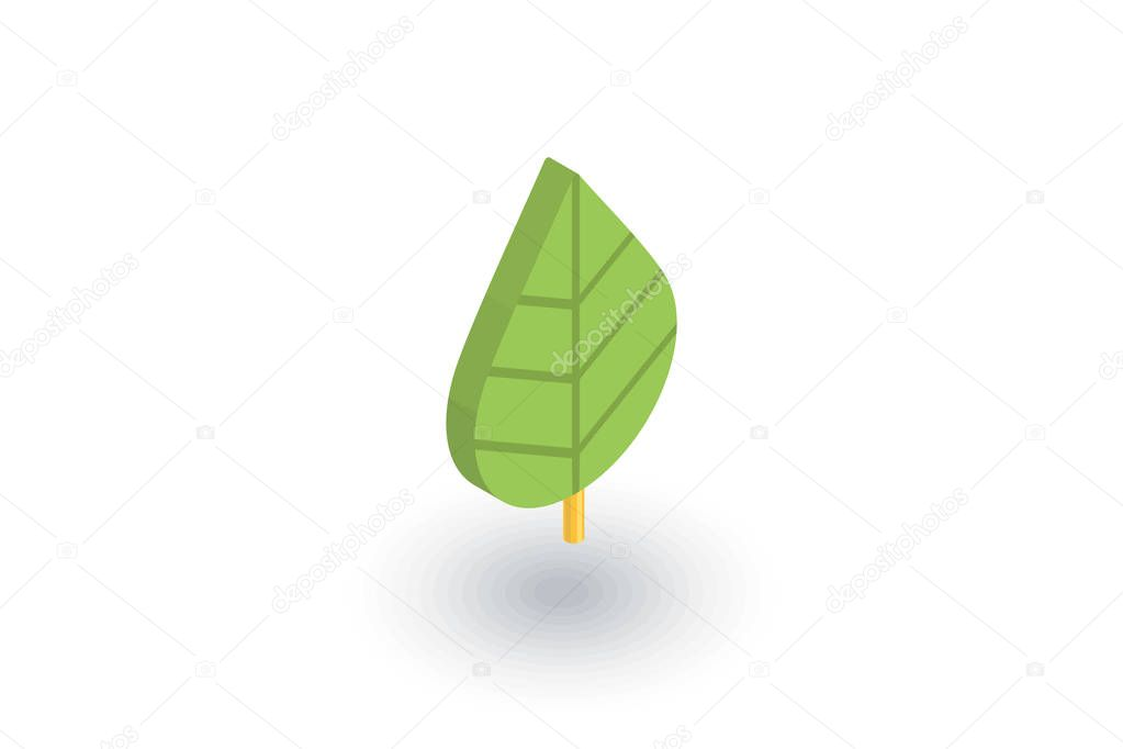 green leaf, eco icon