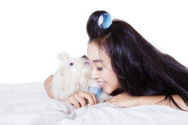 Maltese dog licking face of woman