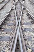 Fotografie Porträt der Bahngleise