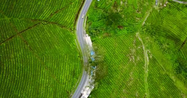 Empty highway at tea plantation valley