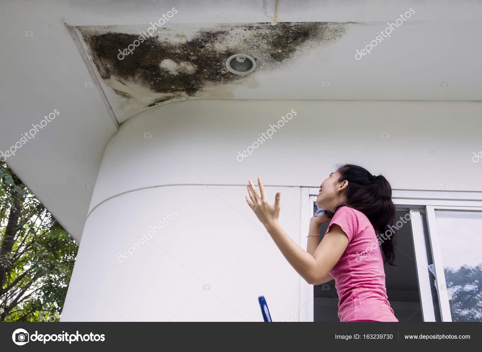 Девушки wallpapers