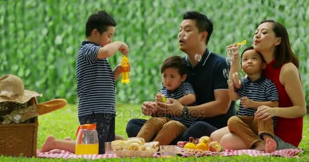 Šťastná rodina s dětmi twin pikniku společně během hraní mýdlové bubliny v parku. Snímek v rozlišení 4 k
