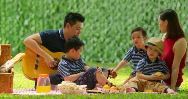 glückliche Familie genießen Urlaub beim Picknicken und Gitarrespielen im Park. Aufnahme in 4k Auflösung