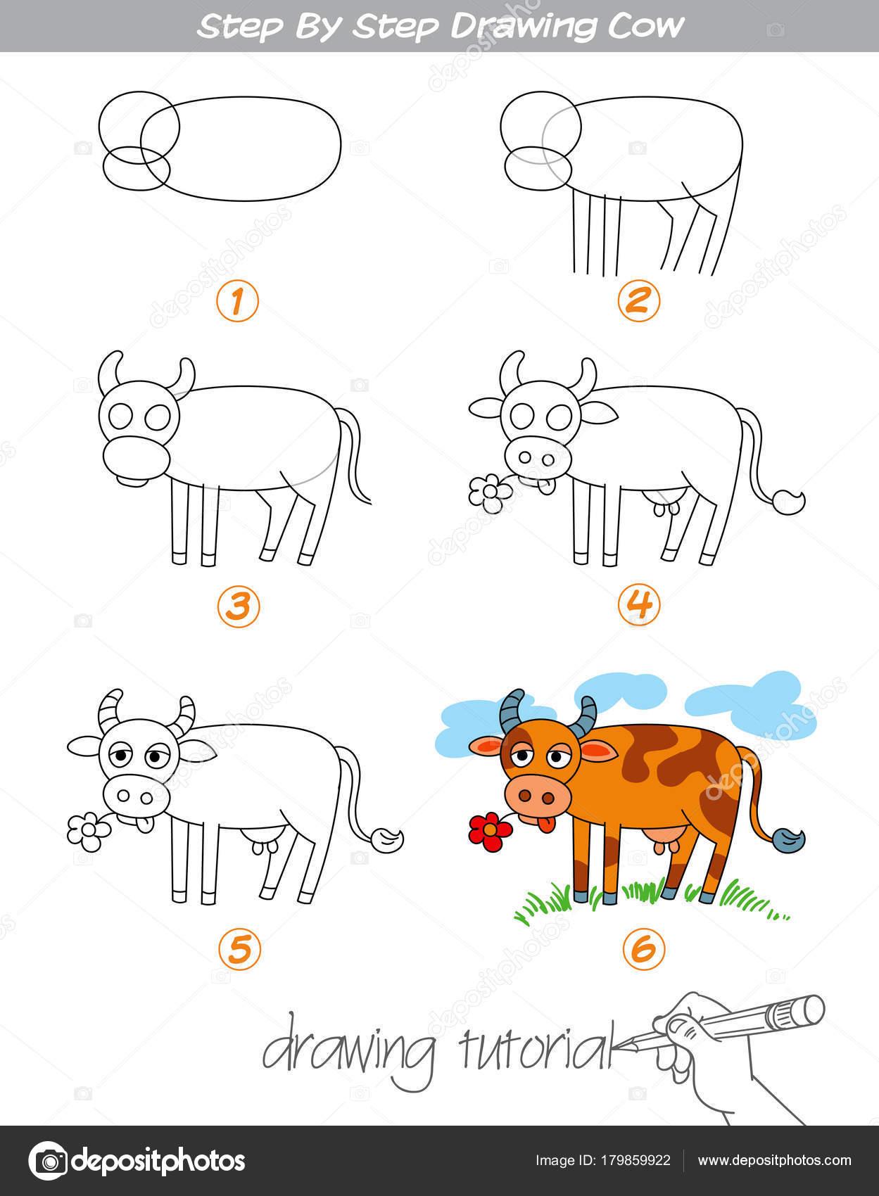 Imágenes Vaca Para Dibujar Paso A Paso Dibujo Vaca Vector De