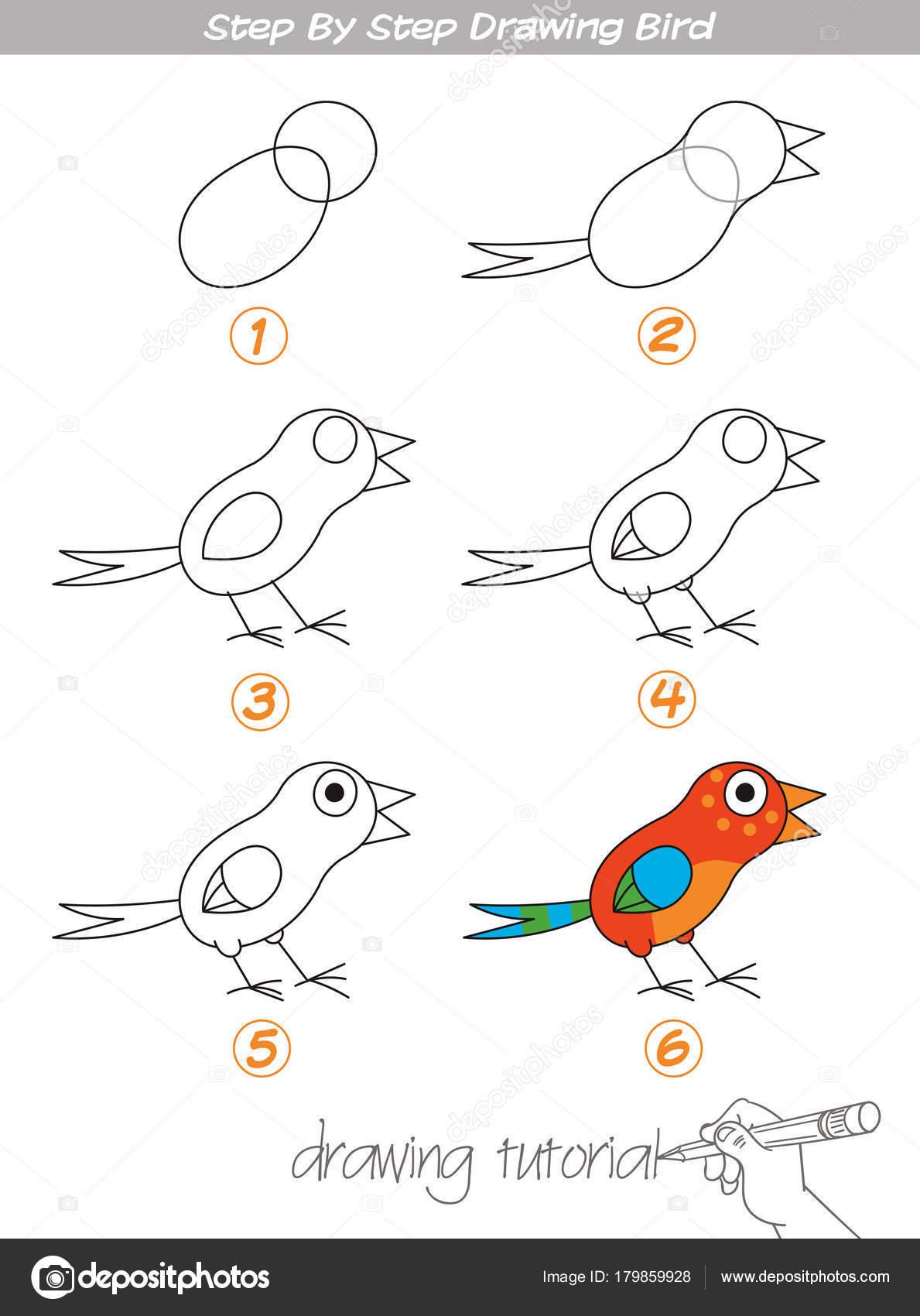 Stap voor stap tekenen vogel stockvector kharlamova lv 179859928 - Oiseau facile a dessiner ...