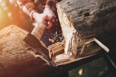 Strong lumberjack chopping wood in the forest, chips fly apart. Lens flare effect