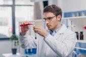 Chemiker arbeitet im biologischen Labor