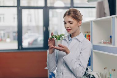 biologist with fern plant