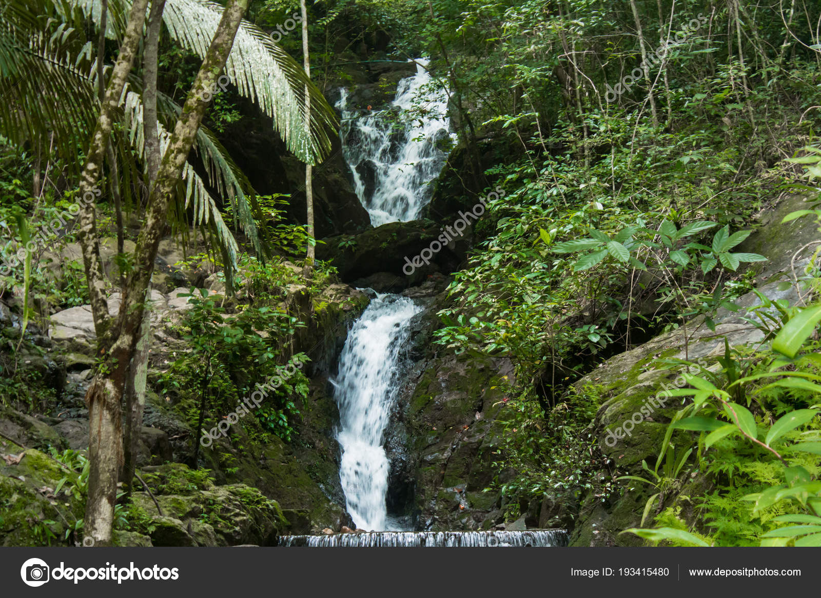 waterfall forest phuket thailand tropical zone stock photo