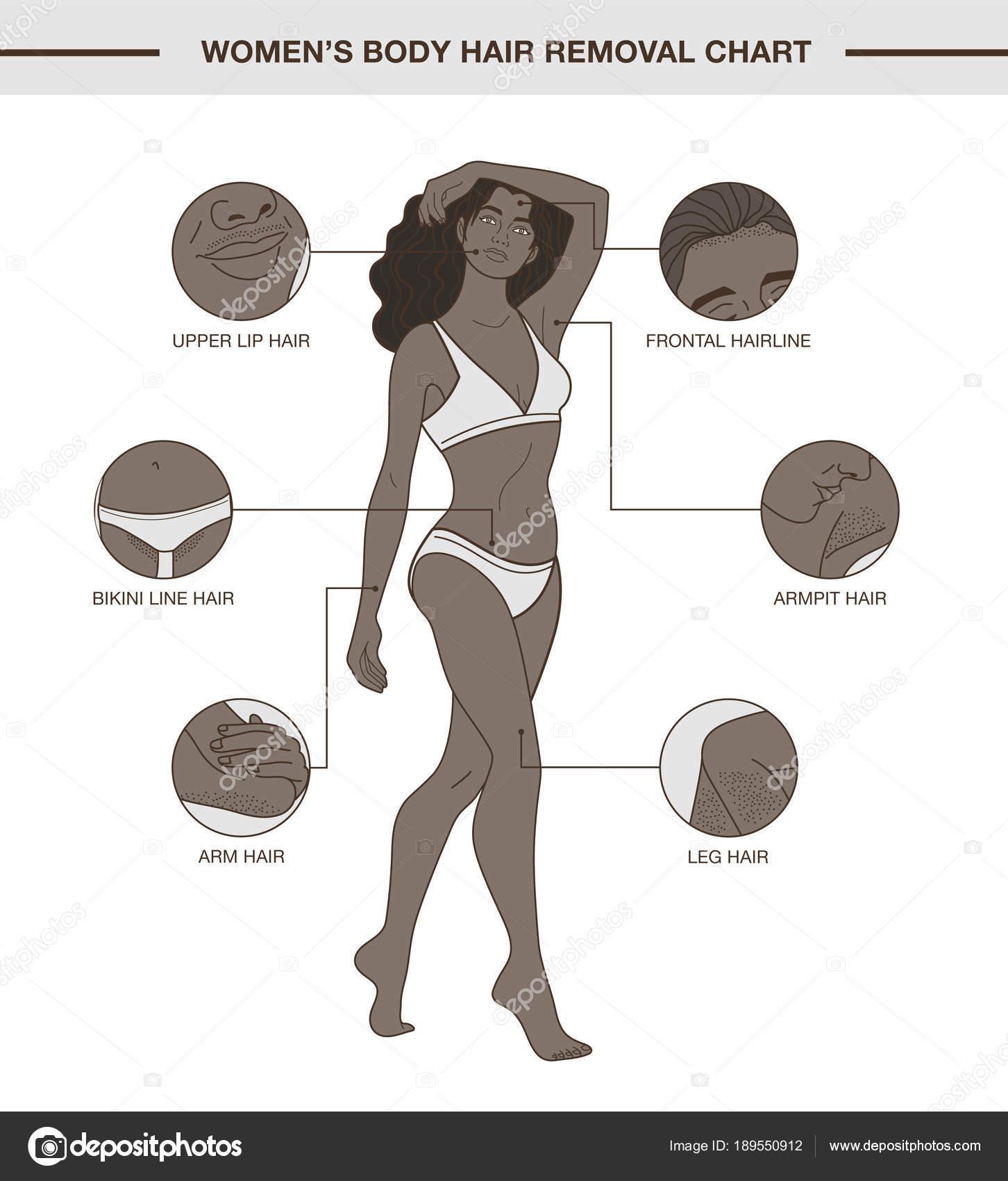 Großzügig Frau Anatomie Diagramm Ideen - Menschliche Anatomie Bilder ...