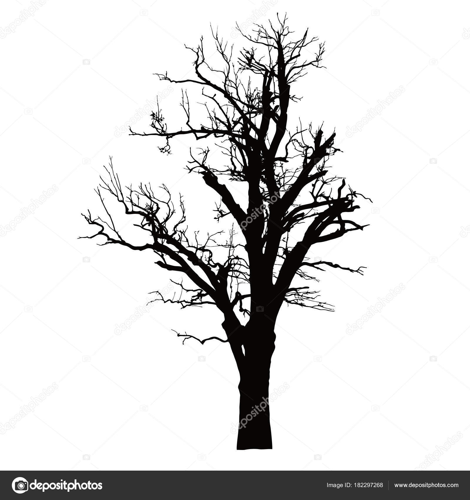 Realistic Silhouette Of A Dead Tree With Dry Branches Stock