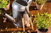Fotografie konev a zahradní nářadí