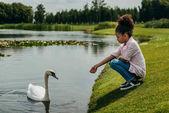 Photo kid feeding swan in park