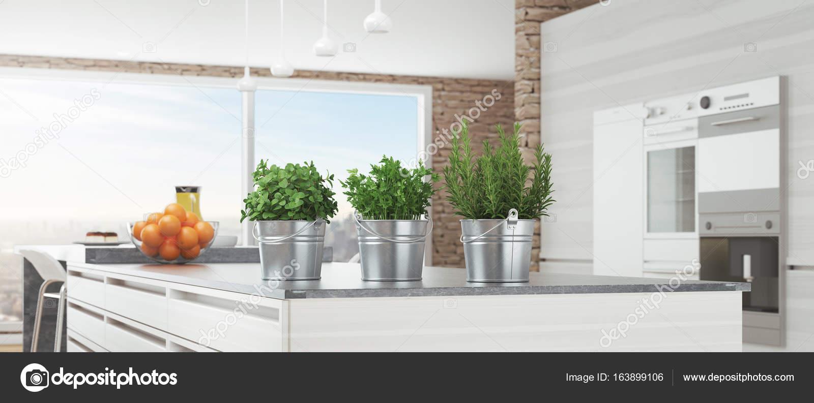 Cucina bianca moderna con piante aromatiche, 3d rendering ...