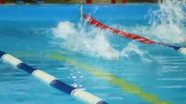 Boy swims backstroke on pool lane, back view