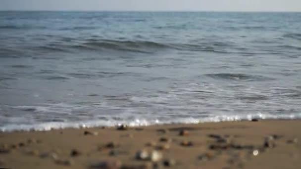 Hullám surf makró