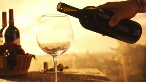 Borkóstoló a szőlőben