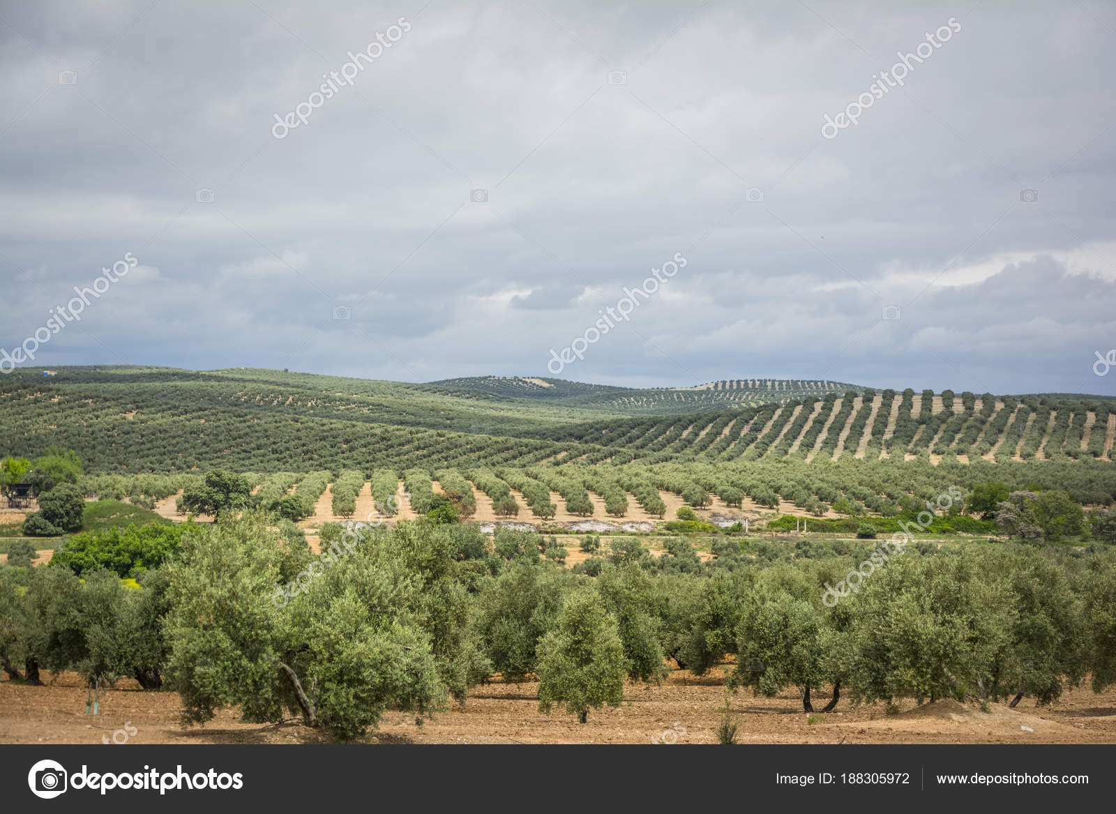 El webchat de Jaén una tecnología increíble