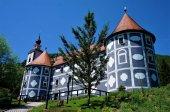 Fotografie Das Schloss in Olimje hinter einem Baum