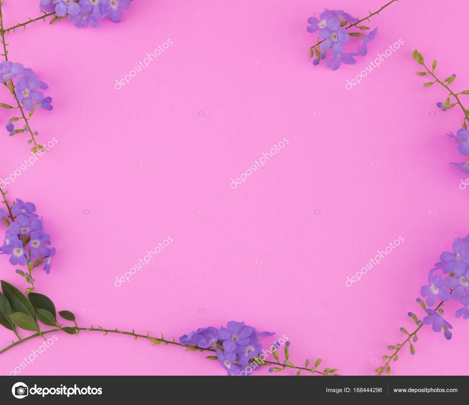 Marco de flores de color púrpura sobre fondo rosa con espacio de ...