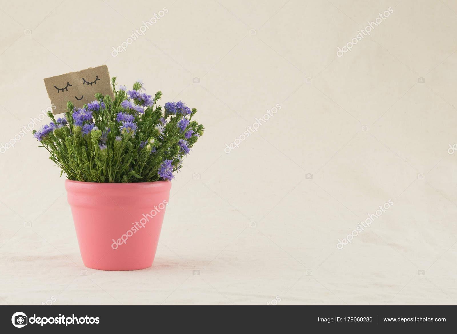 Purple cutter flowers bouquet pink pot smiling face card copy purple cutter flowers bouquet pink pot smiling face card copy stock photo izmirmasajfo