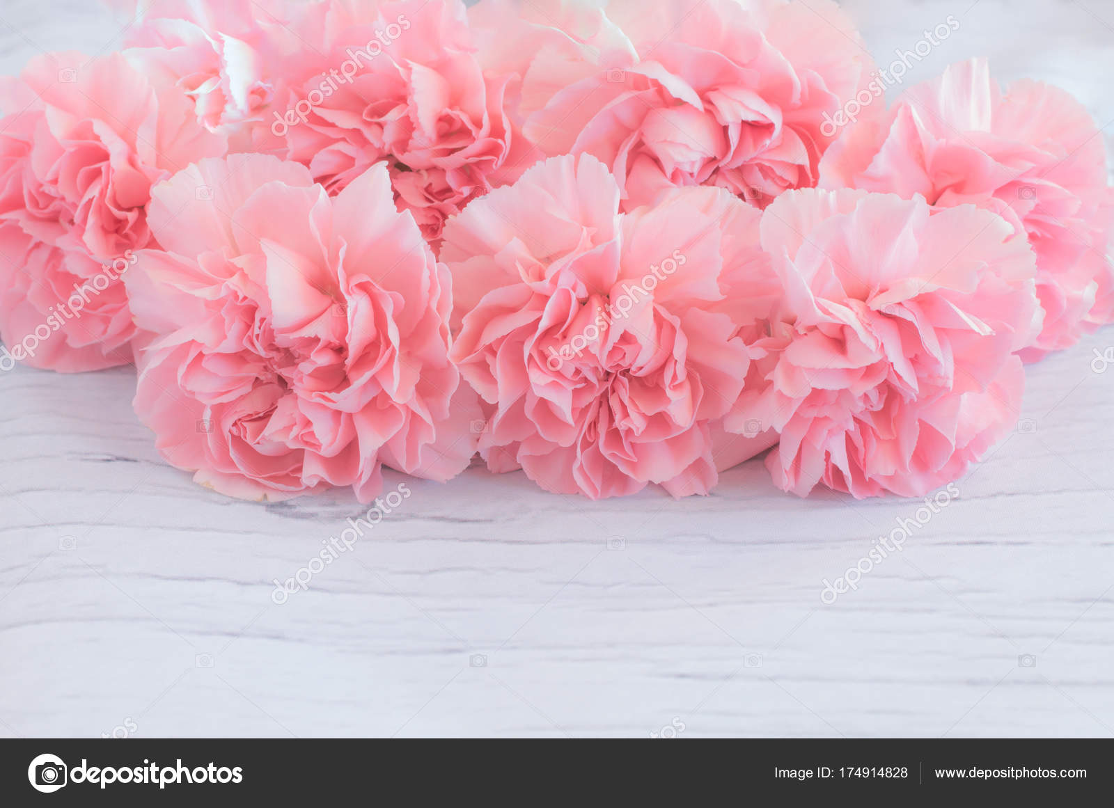 Pink Carnation Flowers Bouquet Wooden Background Soft Filter Stock