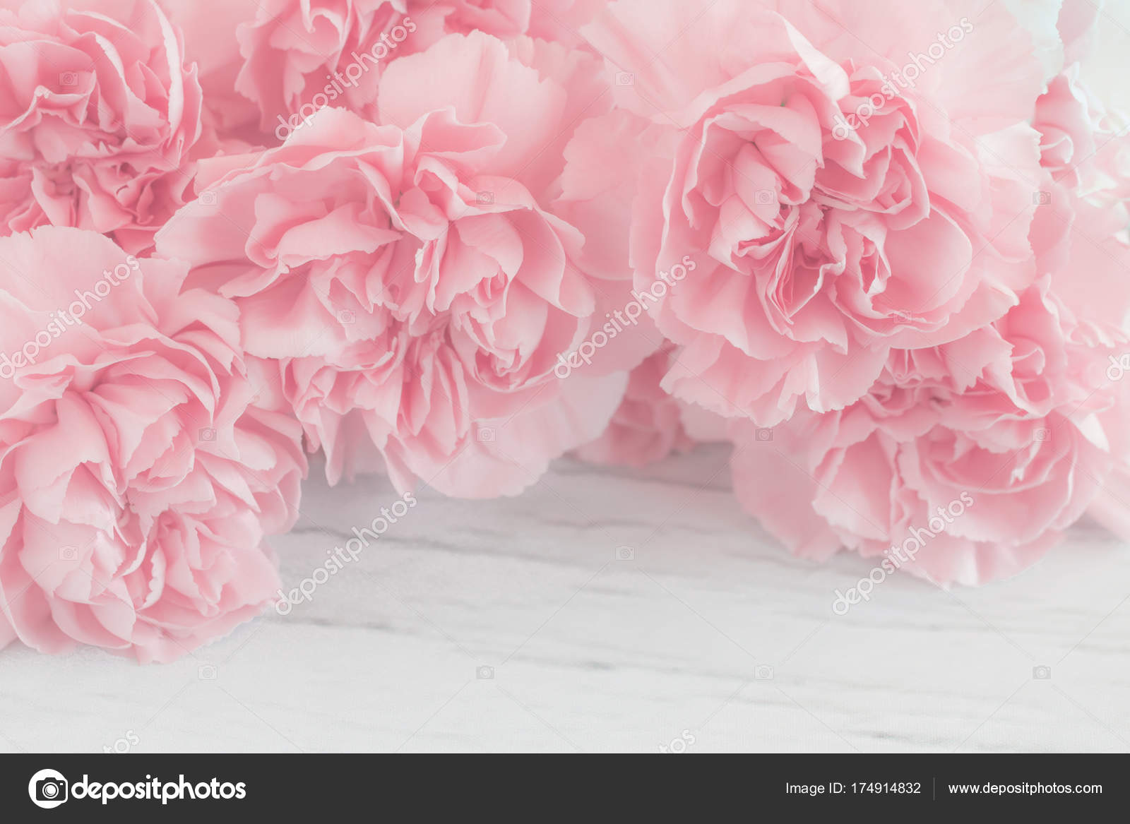 Pink Carnation Flowers Bouquet Wooden Background Soft Filter — Stock ...