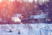 Fotografie Zimní říši divů scénu pozadí, krajiny. Stromy, Les v