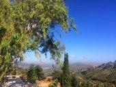Diversità naturale sullisola di Creta